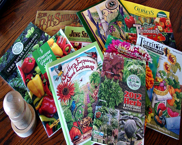 Time for Seed Catalogs